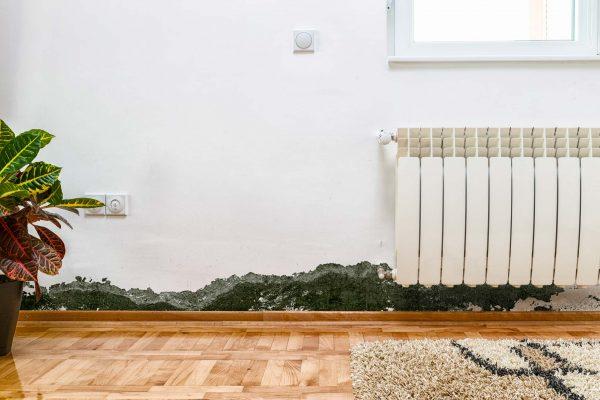 intérieur maison mur humide